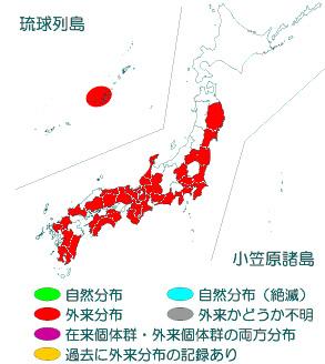 セアカゴケグモ分布図2015