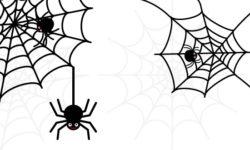 ハロウィンの無料クモ・クモの巣のフリーイラスト画像26点